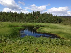 fen, nature reserve, wetland, swamp, floodplain, prairie, land lot, steppe, reservoir, grass, plain, natural environment, plateau, reflection, meadow, wilderness, salt marsh, pasture, grassland, pond, bog,