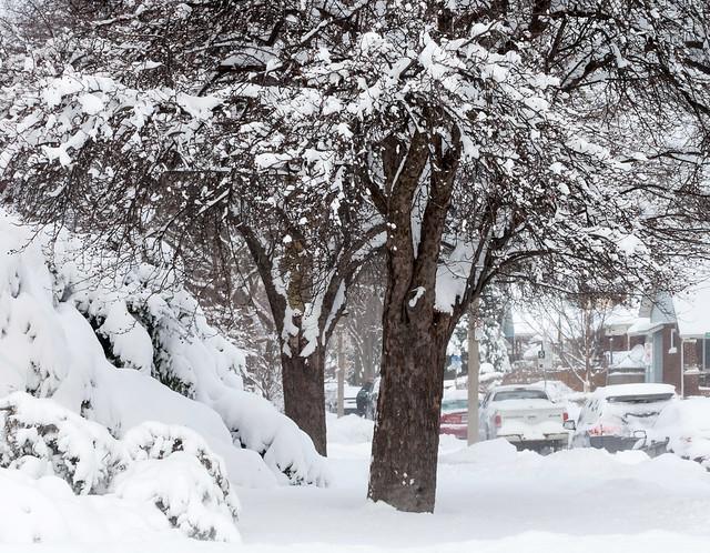 January 6th 2014 Snow Storm