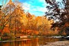 Autumn in the Current River, MO. by JRCmoreno
