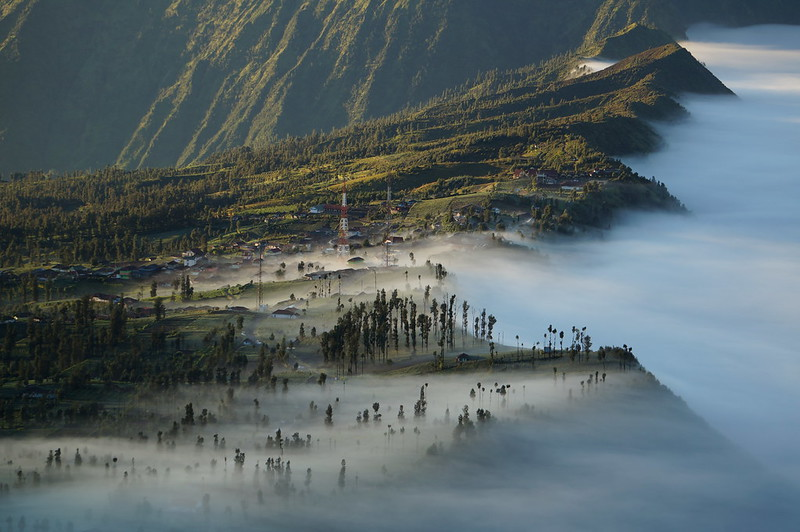 Cemoro Lawang in morning mist