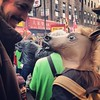 Chinese New Year #Philadelphia #Chinatown #YearOfTheHorse