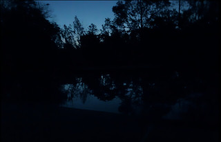gary scott sunrise