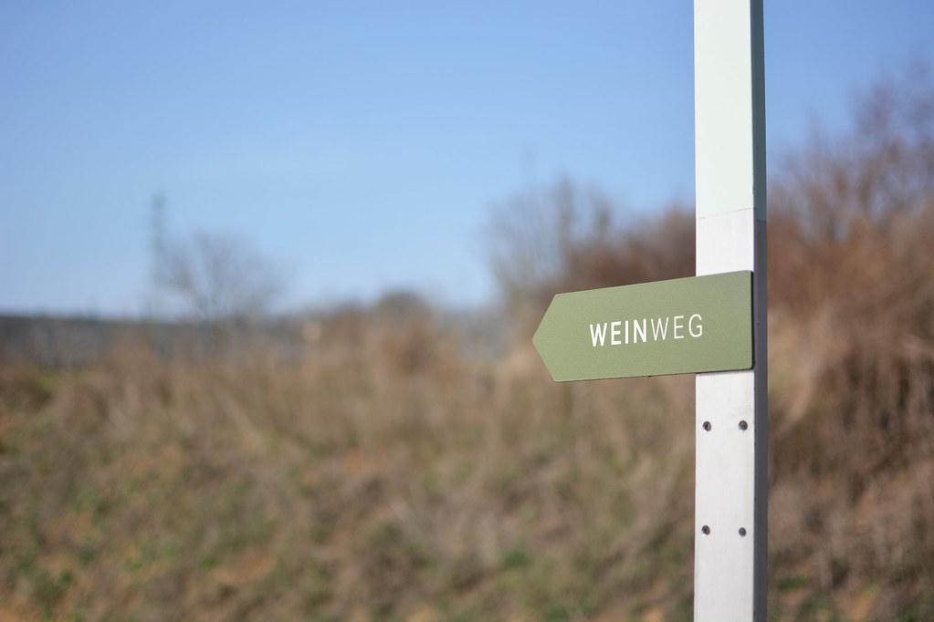 Weinweg_3
