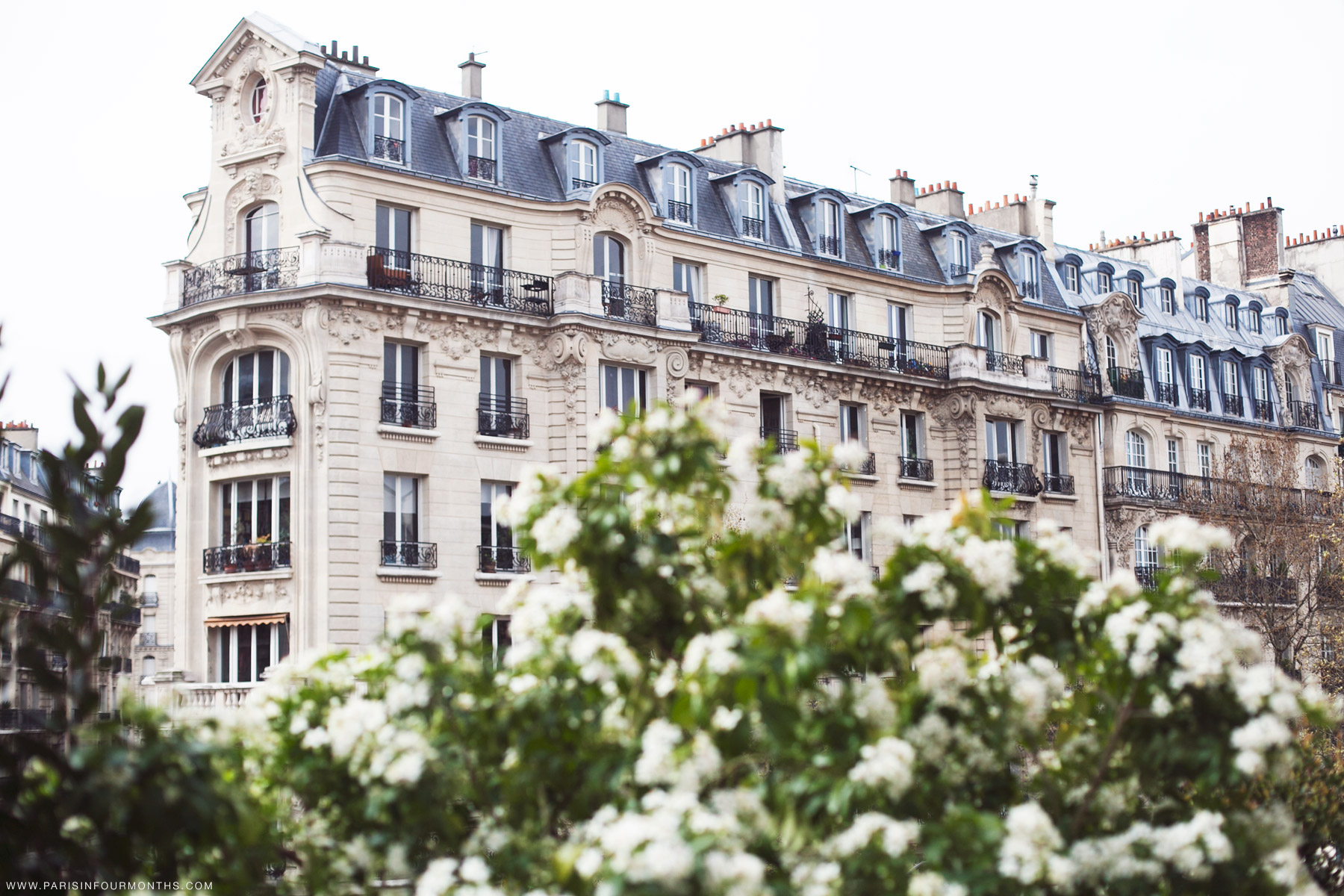 Promenade plantée by Carin Olsson (Paris in Four Months)
