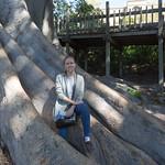 Emily in the tree, Balboa Park