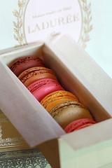 Laduree Macarons IMG_8428-R