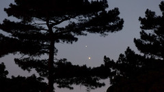 Venus and Jupiter conjunction by PETER TRUSCOTT