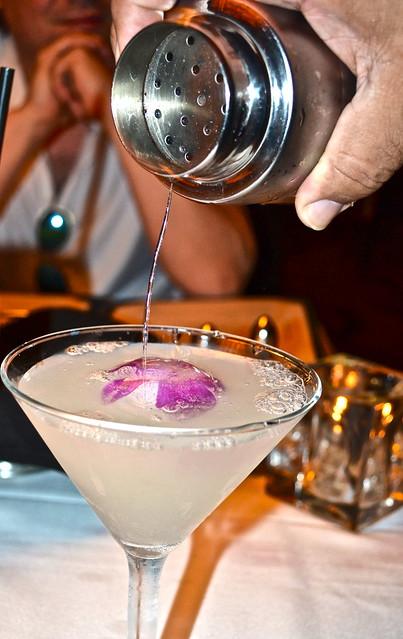 black orchid cocktail - fun alcoholic drinks - ocean prime restaurant