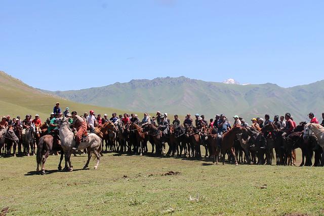 horse battle
