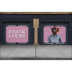 'Stock Lives' by @thievinstephen spotted on the streets of #Rochester #NewYork. #Wallkandy #art #streetart #painting #mural #thievinstephen #fb #f #t #graffiti