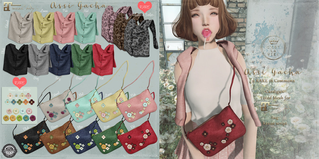 ::C'est la vie !:: Assi Gacha ?The Chapter Four? - SecondLifeHub.com