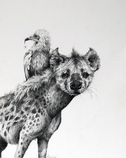 Adonna Khare, Hyena, 2011