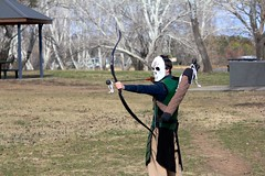 archery, weapon, sports, recreation, outdoor recreation, cold weapon, target archery, bow and arrow,