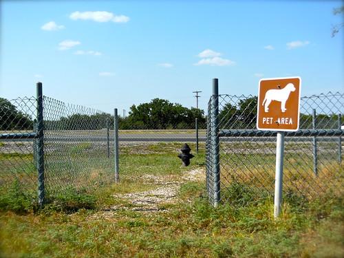 Texas_173