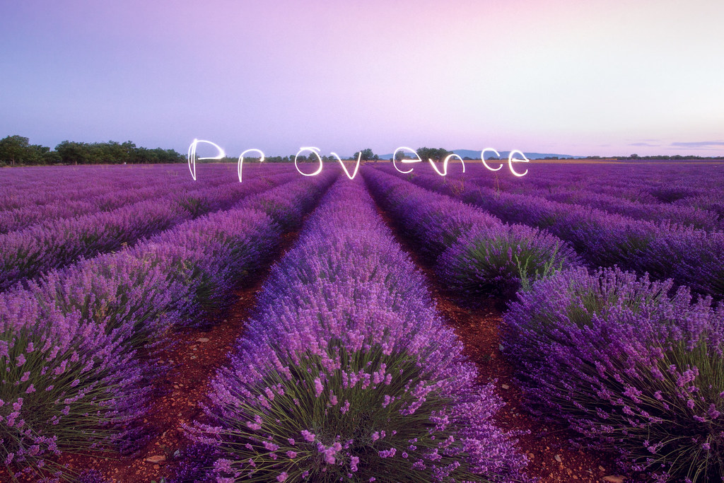 Provence - cover
