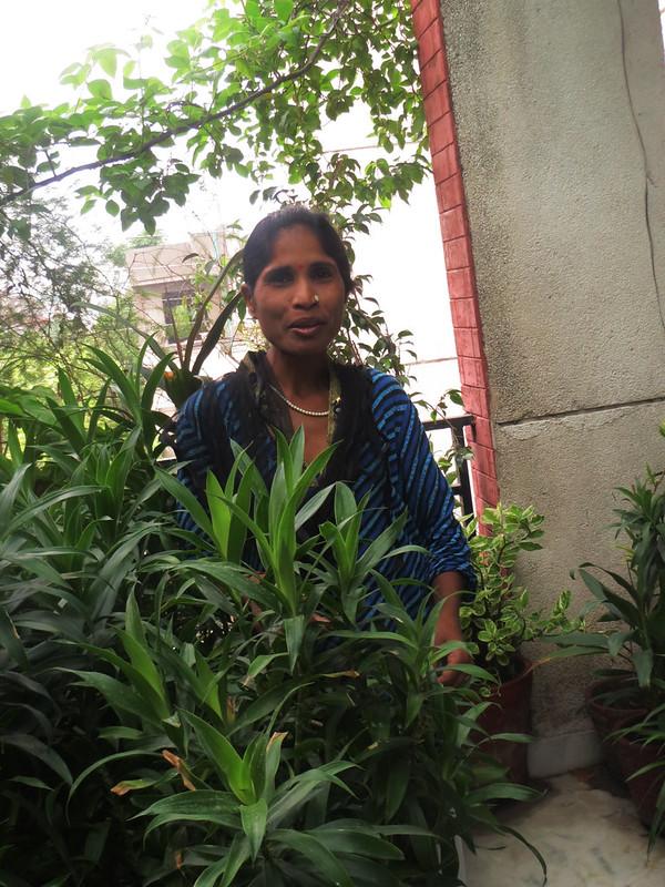 .Delhi's Proust Questionnaire - Gajra, Sector 34, Noida