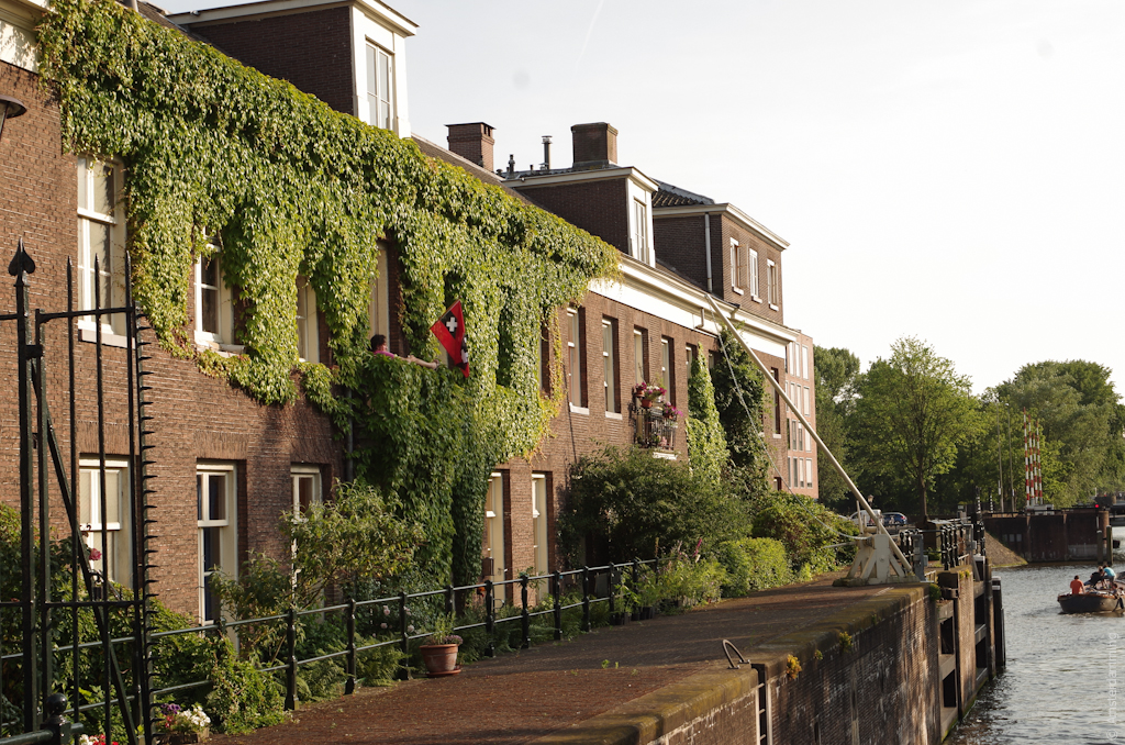 Amsterdam, Ivy Covered House in Entrepotdok Area