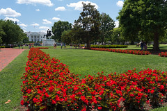 White House from Lafayette Park