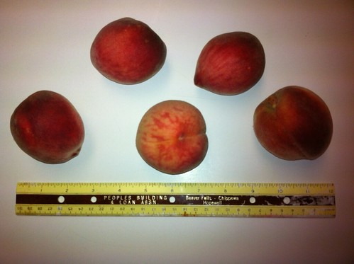 raritan rose peaches