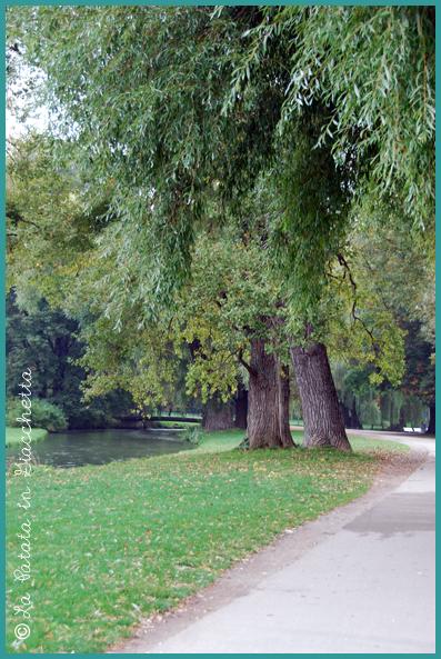 Englischer-Garten-#2