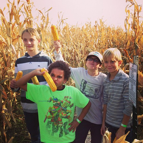 The only photographic evidence I took of today's trip to the corn maze.