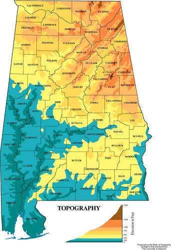 a topo map