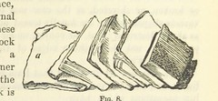 """British Library digitised image from page 161 of """"[Works. Popular edition.] 2 series"""""""