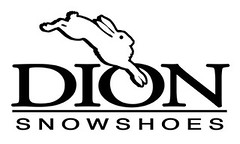 DION_Logo Small