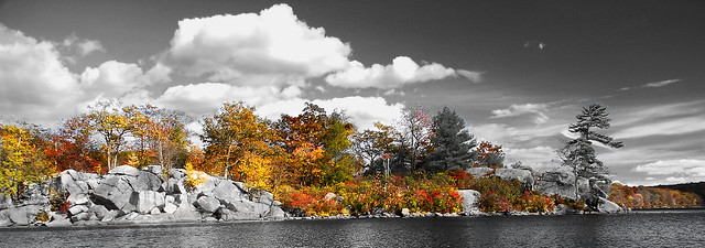 Color of Fall B&W 2: Golden Lake
