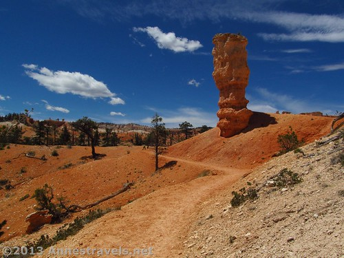 A lone spire along the Fairyland Trail in Bryce Canyon National Park, Utah