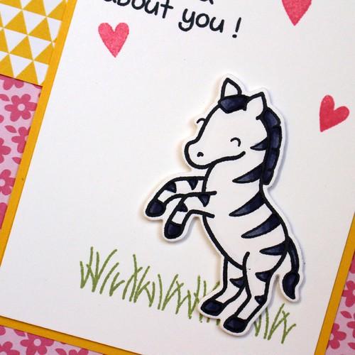 Wild Zebra Card 2
