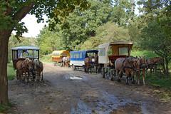 Parkplatz für die neuesten PS-Boliden aus Hiddensee