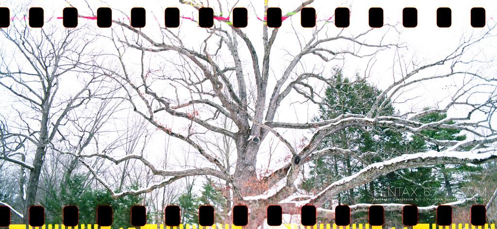 全幅以上,中片幅未滿 - P67 拍135底片。