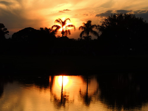 blue sunset red wallpaper sky orange sun lake color reflection tree water silhouette yellow night clouds landscape evening pond flickr florida dusk palm bradenton mullhaupt cloudsstormssunsetssunrises jimmullhaupt