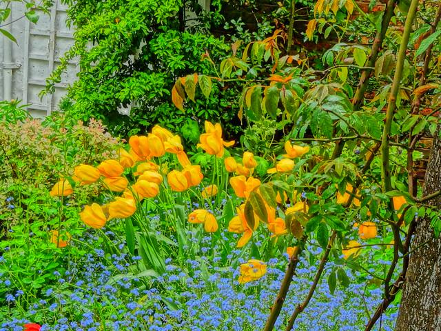Jardin dans la pluie, impressioniste style