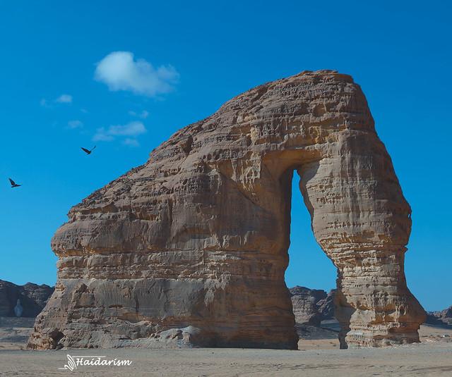 The Elephant Mountain