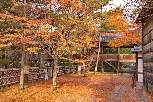 【写真】2012 紅葉 : 清凉寺/2020-09-21/IMGP7818
