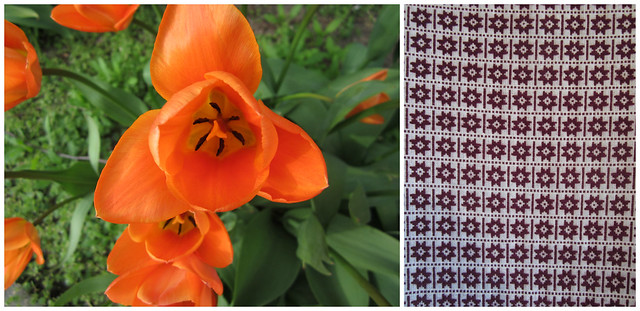 tulips and patterns