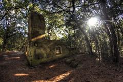 Stoney-Baynard Ruins on Sea Pines Plantation - Hilton Head