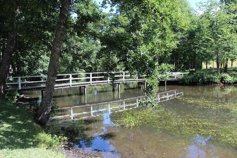 siltaa