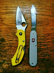 spyderco dragonfly 2 and victorinox bantam