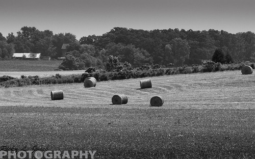 Bails of Straw by Ricky L. Jones Photography