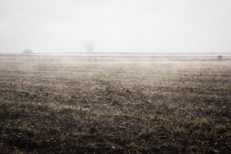 mgła-7