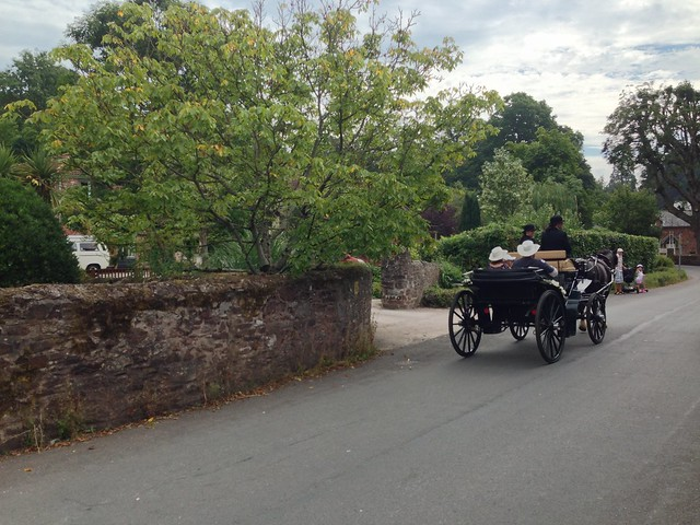 Horse and Carriage - Cockington, Devon