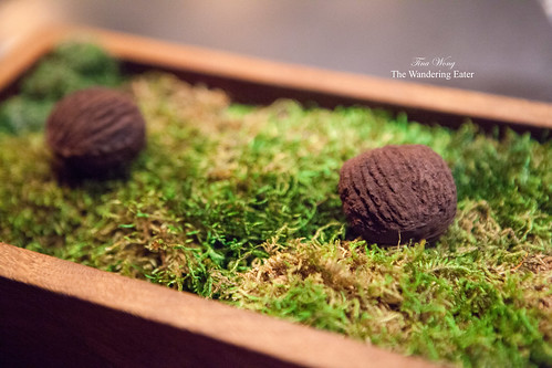 Petit four - Black walnut