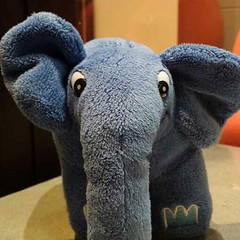 331: Elephpant on tour