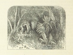 """British Library digitised image from page 370 of """"Curiosities of Savage Life ... Third edition. With woodcuts and designs by Harden S. Melville, etc"""""""