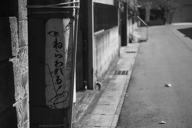 20131213_01_歩きは、ねらわれる!