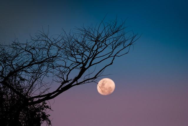 Lua na Serra da Beleza