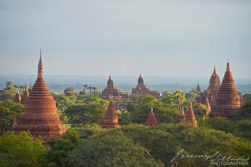 morning travel sky cloud tree sunrise temple pagoda southeastasia top burma buddhist bricks group buddhism myanmar canopy pagan bagan treetop ayeyarwady earthasia irriwady